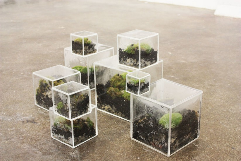 Melanie Billark, CubED, 2015, acrylic, rocks, soil, moss, and water, approx. 18 x 10 x 15 inches