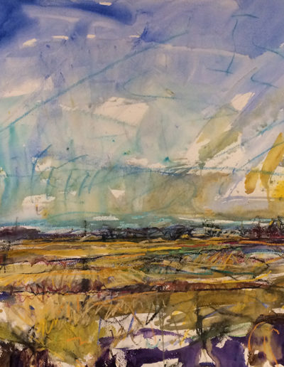 Jim Reid, Peel Plain 28-11-17-1, 2017, acrylic and pastel on paper 35 x 55 inches