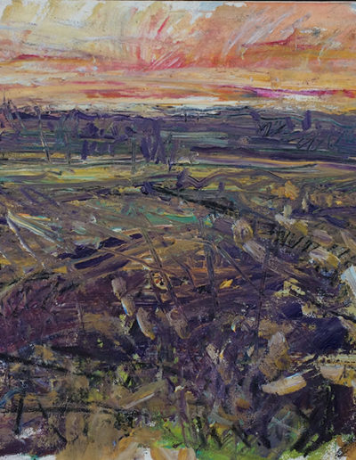 Jim Reid, Peel Plain #1, 5-5-15: S. from Sloan Rd., 2014, acrylic and charcoal on paper mounted canvas, 22.5 x 45 inches (framed)