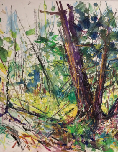 Jim Reid, Forest 10-10-17, 2017, acrylic and pastel on paper, 37 x 36.5 inches (framed) (Private Collection)