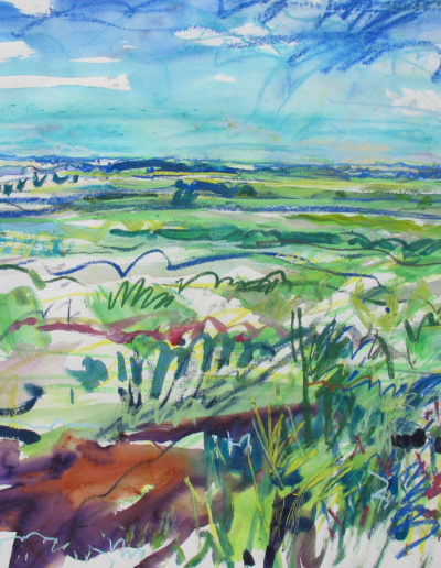 Jim Reid, Peel Plain 7-6-16 #1 SE from Torbram, N. of Old School Rd., 2016 acrylic and pastel on Arches paper, 31.5 x 41.5 inches (framed)