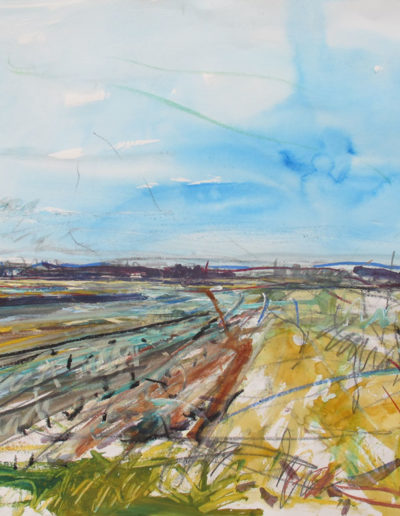 Jim Reid, Peel Plain 30-3-16-1, 2016, acrylic, pastel and graphite on paper, 25 x 35 inches (Collection of Peel Art Gallery)