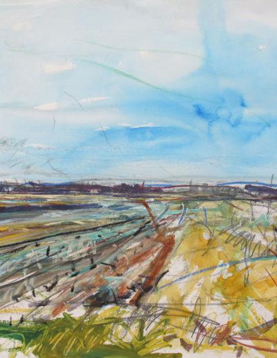 8.-2016-Peel-Plain-30-3-16_1-acrylic-on-paper-2522x3522-Peel-Art-Gallery-