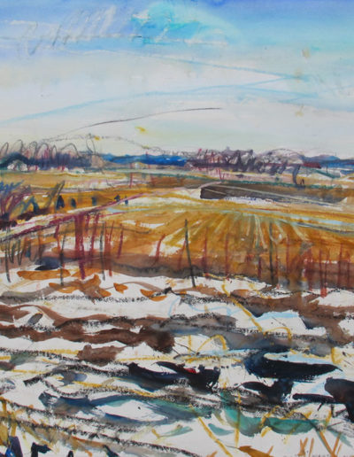 Jim Reid, Peel Plain 30-3-16 #2, W. from Mississauga Rd., S. of Mayfield Rd., 2016, acrylic and pasted on Arches paper, 31.5 x 41.5 inches (framed)
