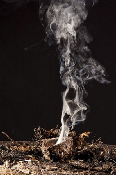Peggy Taylor Reid, Scorched Series, 2010, unique lambda Fugiflex print on dibond, 29 x 19 inches