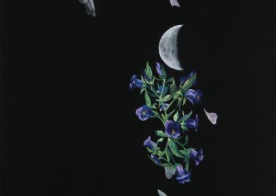 Julie-Oakes_Lunar_22