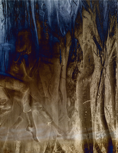 Joan Kaufman, Night Procession 3, 2017, c-print, 18 x 40 inches