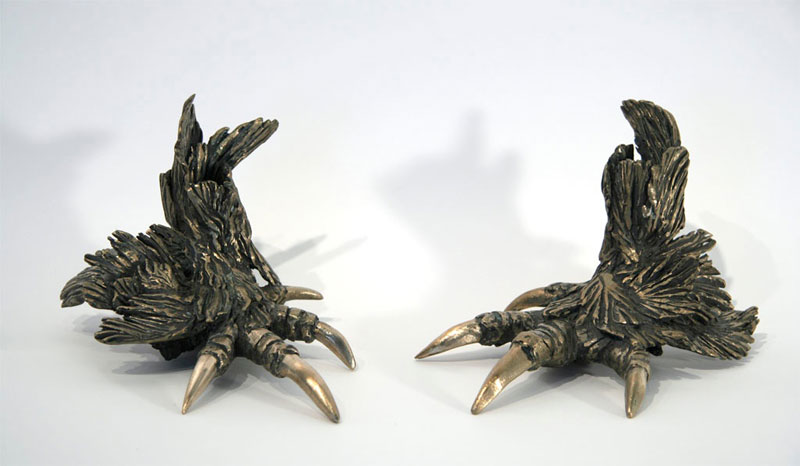 Rooster-Feet