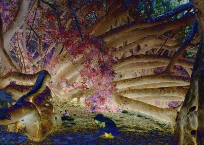 Roots-Radicles_12_web