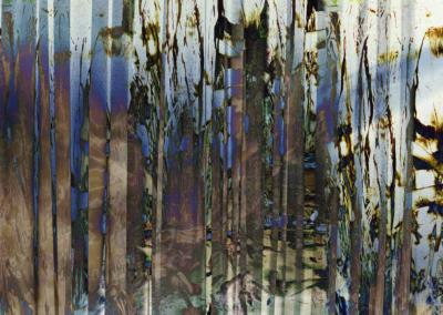 Roots-Radicles_4_web