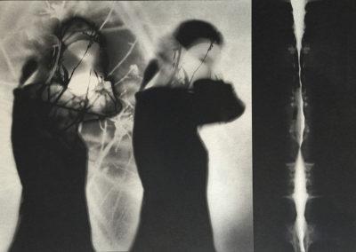 Sara Silks, Encountering Isamu Noguchi, 2015