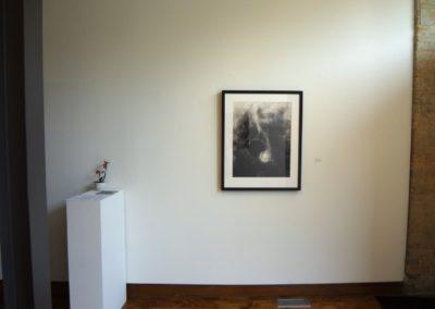 Saw-the-Splendour-Installation-Shots-1