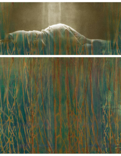 Joan Kaufman, Surface Tension Root Series 1.3, 2015, c-print, 58 x 48 inches