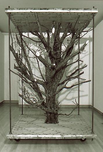 Fragments of Preservation, 2000 Wood & Metal 72 x 72 x 108 cm