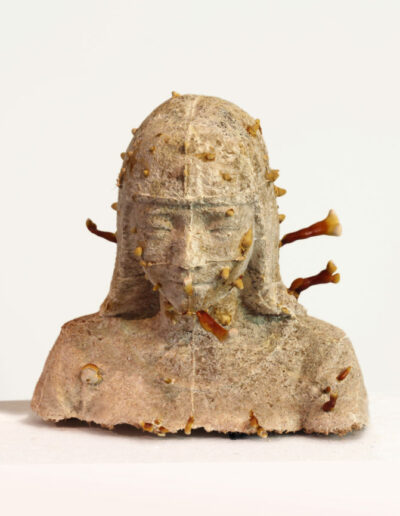 Xiaojing Yan, Lingzhi Girl, 2016-17, cultivated lingzhi mushrooms and wood chips, dimensions variable