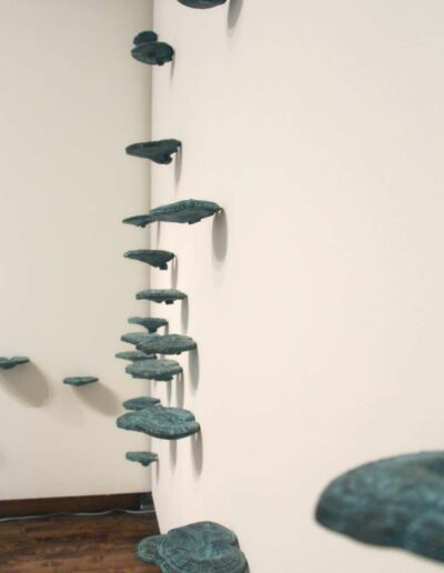 Xiaojing Yan, Lingzhi, 2014, cast bronze, dimension variable (Alternate Installation View)